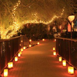 Christmas-path