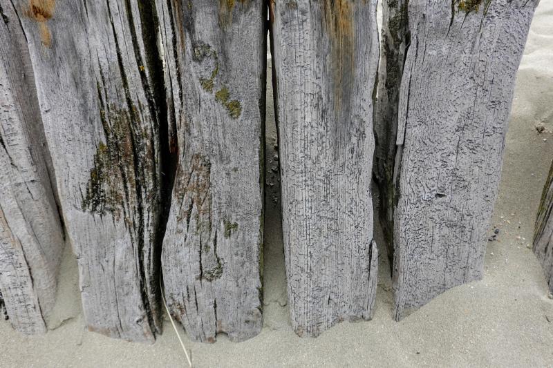 Wood-utah-beach