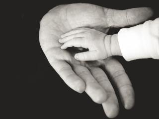 Trust-hands