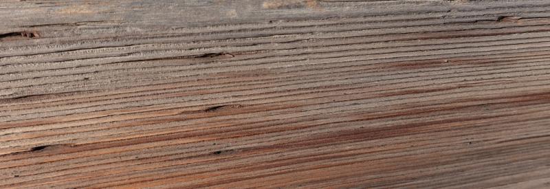 Wood-oct-2020