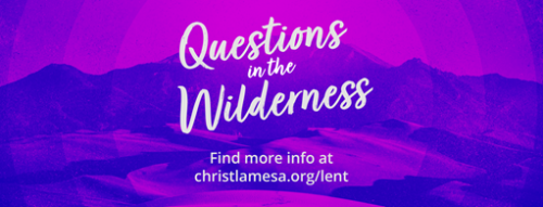 Questions-in-the-wilderness